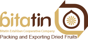 BitaTin Logo